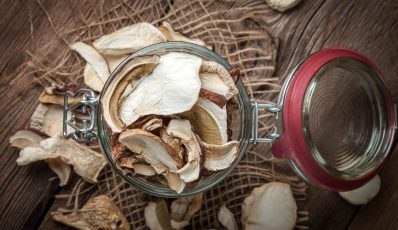 So lagern Sie getrocknete Pilze
