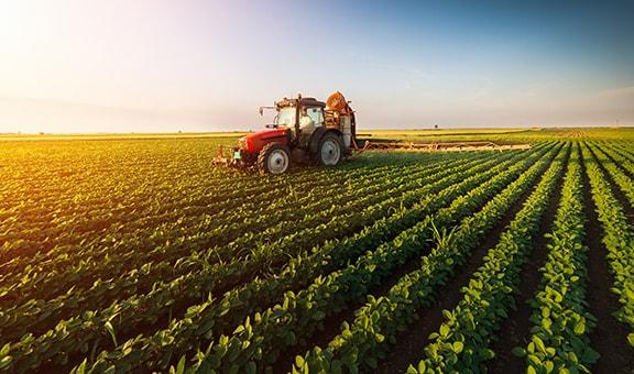 Fourniture agricole